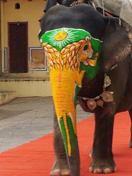 Elefant mit Makeup