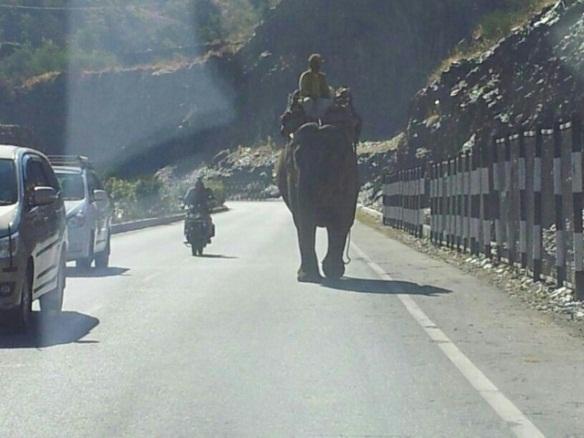 130311_Reisebericht-Indien-01_html_m53dbbbb0