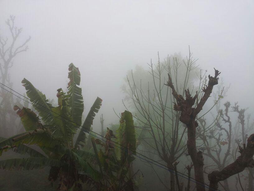 Dichter Nebel im Bergdorf