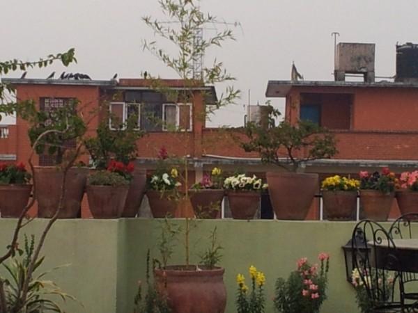 130421_Reisebericht-Nepal-04_html_7db3856e