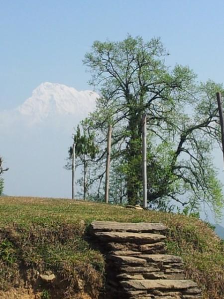130423_Reisebericht-Nepal-05_html_m19386b03