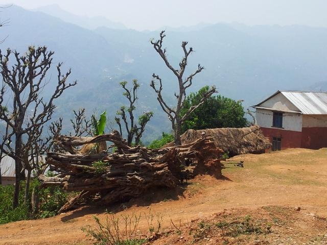 Nepal 3_html_41265f75
