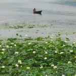 Mit Sicht auf den Fewa Lake